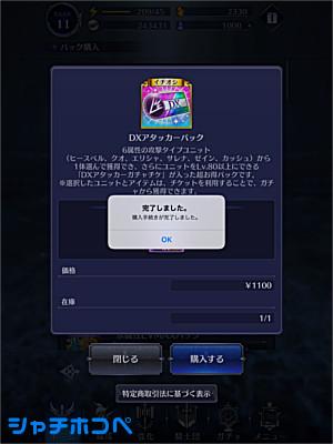 DXアタッカーパック 1100円
